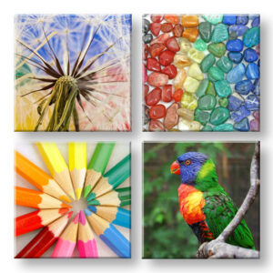 Vászonkép Colorful vibes 4 részes XOBKOL20E42 (modern)