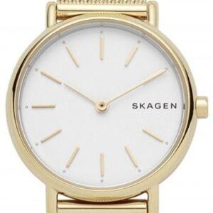 Női karóra Skagen Signature Slim SKW2693 - Típus: divatos