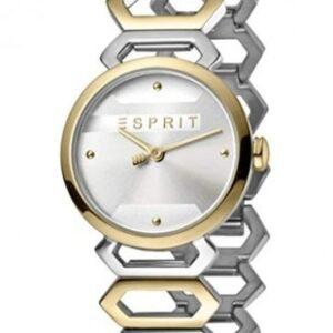 Női karóra Esprit Arc ES1L021M0075 - A számlap színe: ezüst