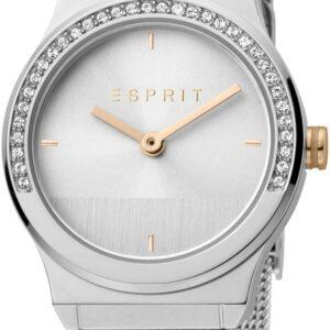 Női karóra Esprit Magnolia Mini ES1L091M0045 - A számlap színe: ezüst